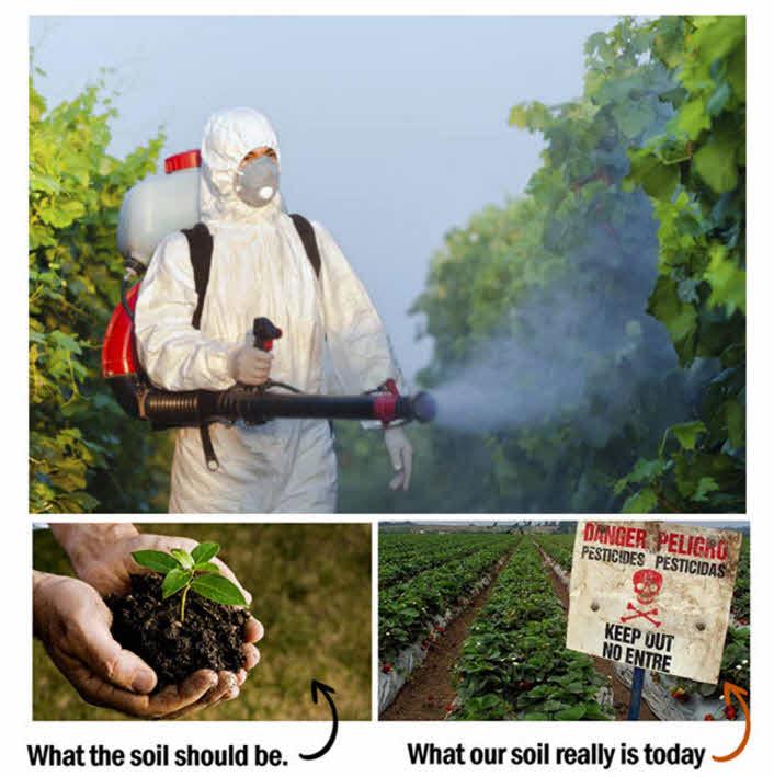Key mineral depletion in soil
