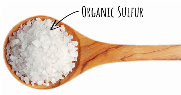What is organic sulfur