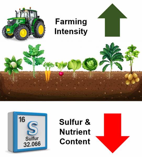 farming impacts soil-based minerals like Sulfur / sulphur
