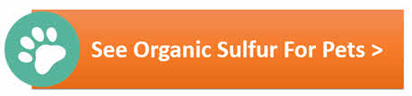 Organic Sulfur For Pets