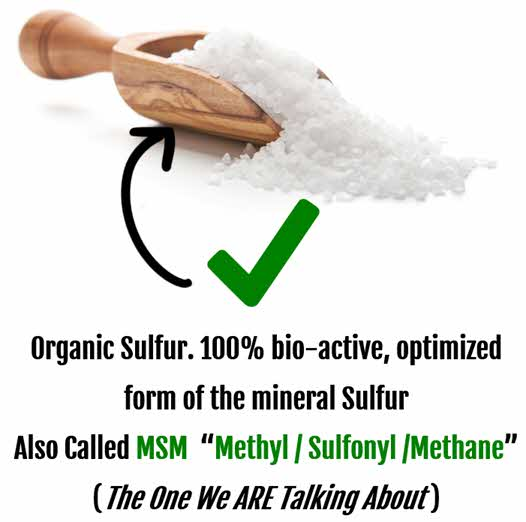 Organic Sulfur / Sulphur - the one we are talking about