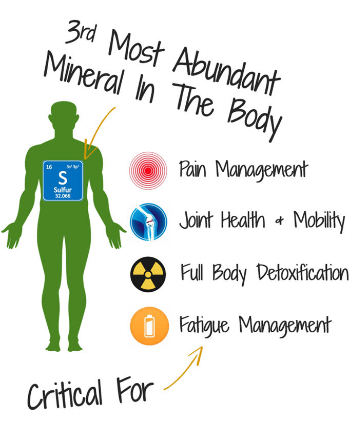 Sulfur is the 3rd most abundant mineral in the body
