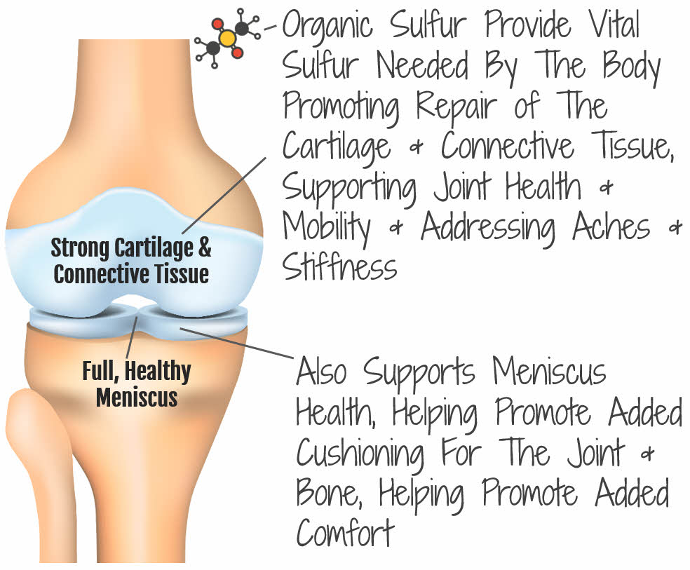 How Organic Sulfur Helps Impact Joint Health