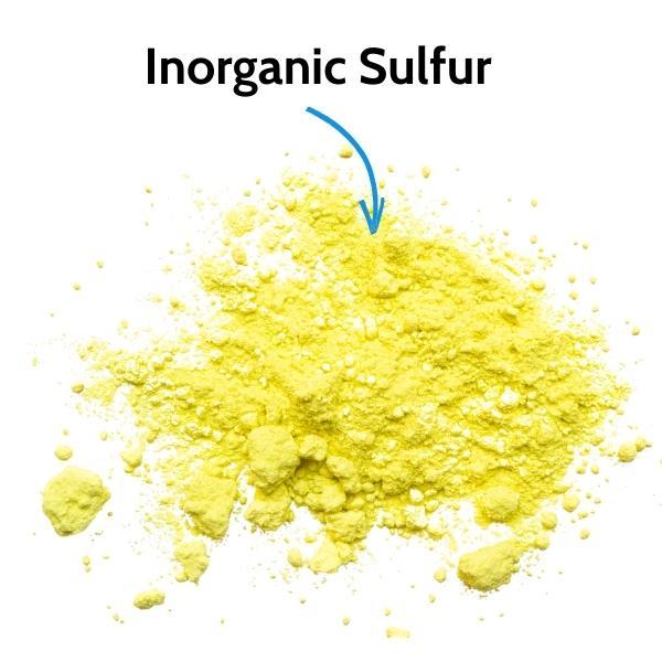Inorganic Versus Organic Sulfur/Sulphur