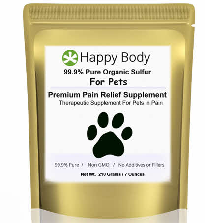 MSM For Dogs and Pets 1 Pack