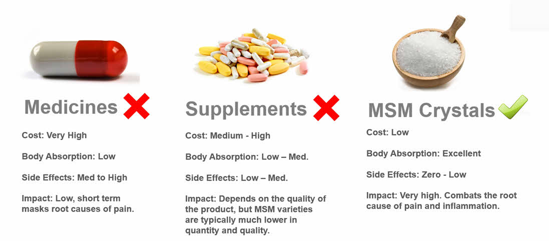 MSM For Dogs and Pets Compared To Other Medicines