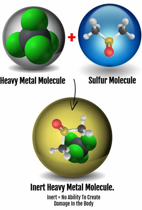 MSM and heavy metals
