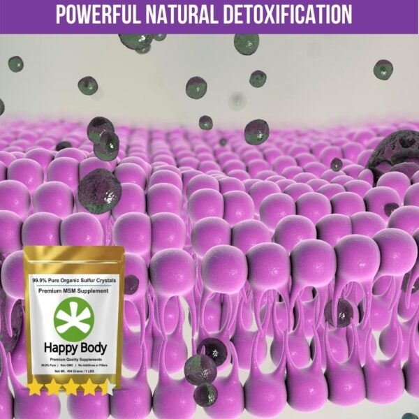 MSM for Detoxification Support
