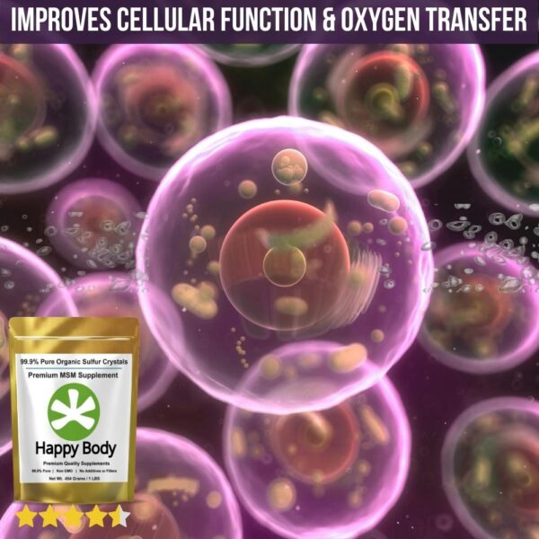 MSM for Oxygen Transfer