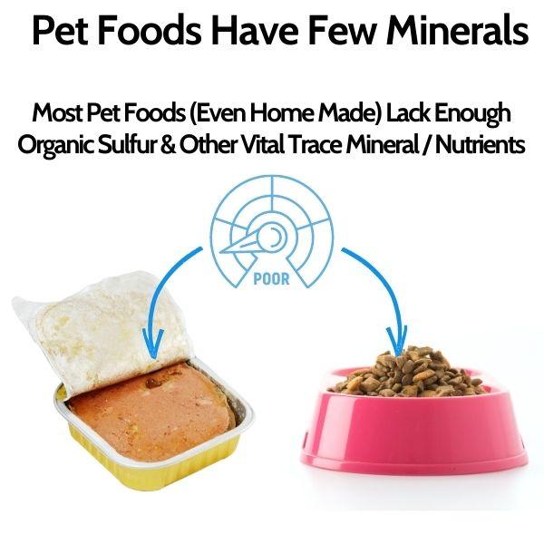 Most Pet Foods Lack MSM - Sulfur