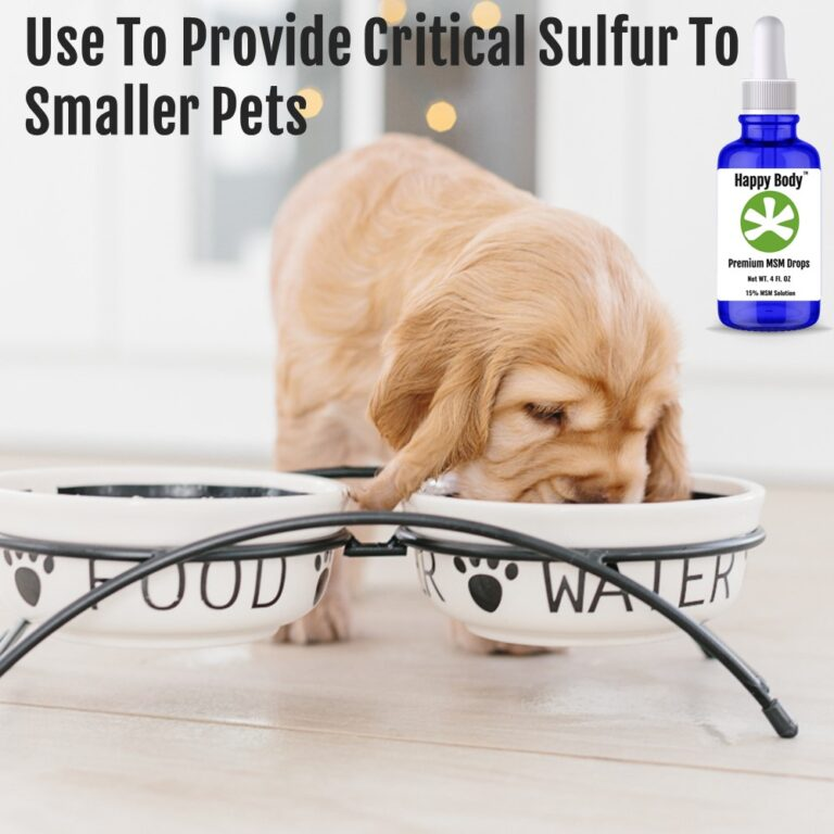 Use MSM drops to provide Sulfur to small pets