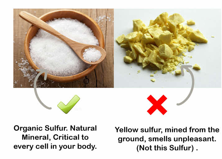 Type of MSM Sulfur for Hair