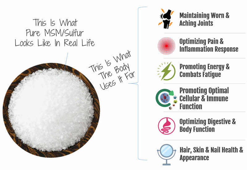 What the body uses Organic Sulfur For