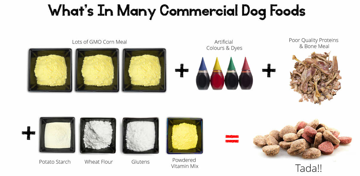 Whats in dog food that leads to pain and inflammation