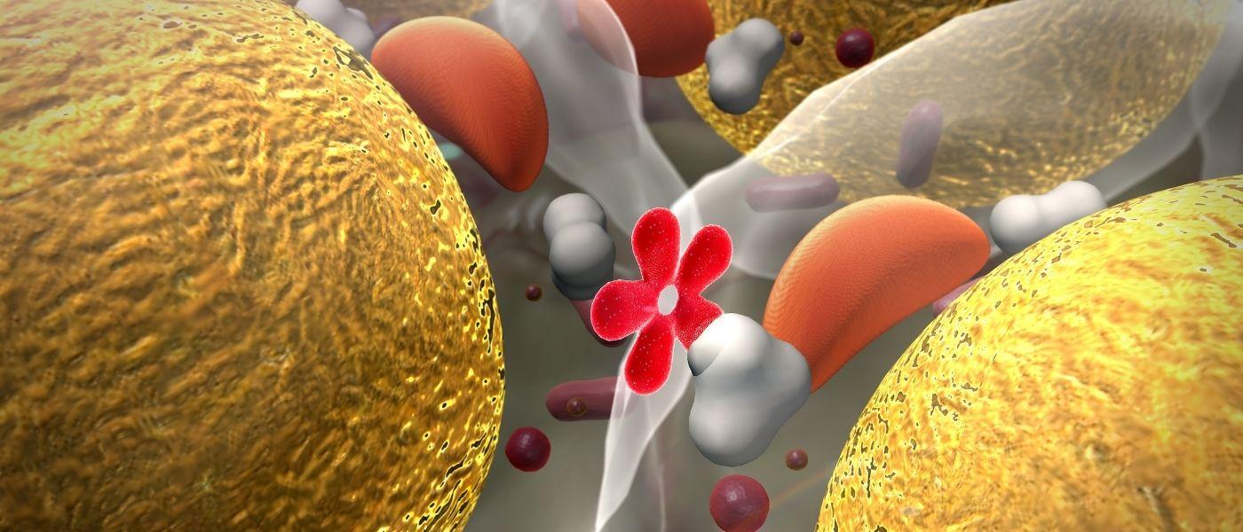Vitamin D3 Benefit - blood sugar